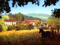 Baby Kinderbauernhof Deutschland Familienbauernhof Bayerischer Wald