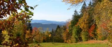 Bayerischer Wald Ferienwohnungen - Urlaub mit Berge, Wälder und Wandern