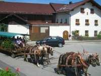 Ausflugsziele in Rinchnach Erlebnishof in Deutschland