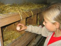 Ferien mit Kindern in Bayern Familienurlaub am Bauernhof