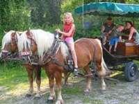 Reiterferien in Niederbayern