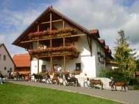 Reiterferien im Oberpfälzer Wald am Reiterhof Kollerhof bei Neunburg