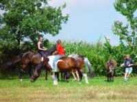 Urlaub auf dem Reiterhof in Bayern Kinder reiten