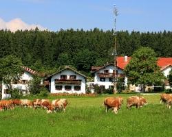 Deutschland Wellnessbauernhof Bayern Wieshof in Kirchberg